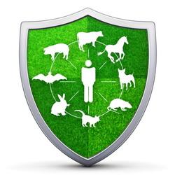 Programe UE de combatere boli animale
