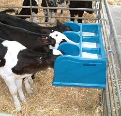 vitel 3