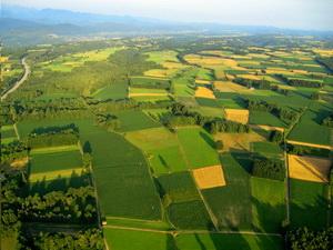 Platile compensatorii aplicabile pe terenuri agricole in 2017