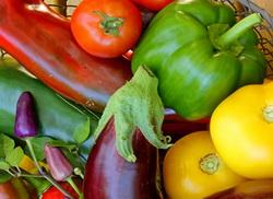 Boli si daunatori la culturile de ardei, tomate si vinete