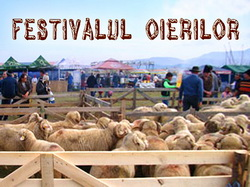 Festivalul Oierilor 2016 - Tohanul Nou - Brasov