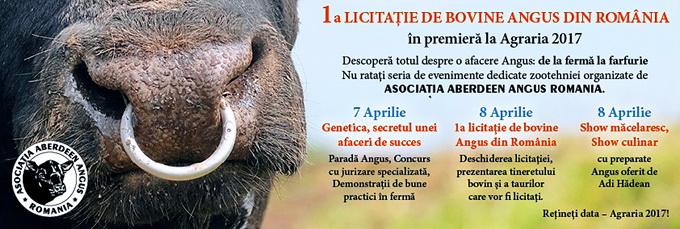 1a licitatie de bovine Angus din Romania - Program