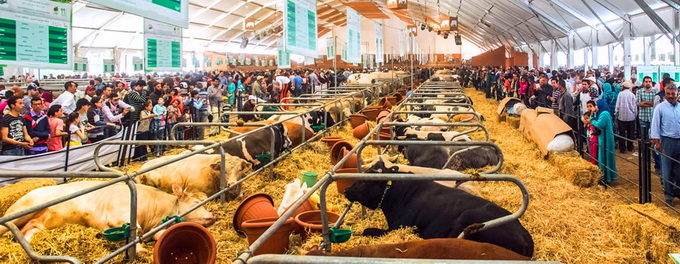 Salonului International al Agriculturii din Maroc SIAM 2017 - II