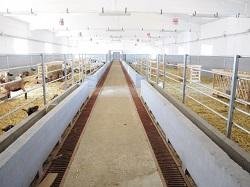 large ferma capre 3 resize