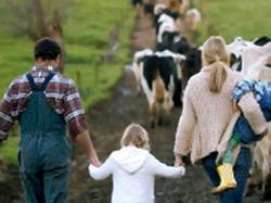 Platforma de informare FAO - Ferme de familie