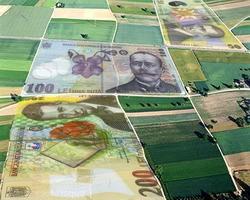 Plati fermieri simplificate prin PAC 2015-2020