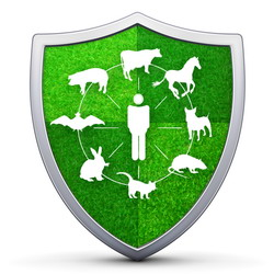 prevenirea zoonozelor