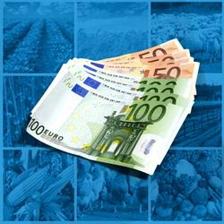 Plati directe CE 2013 fermieri Romania