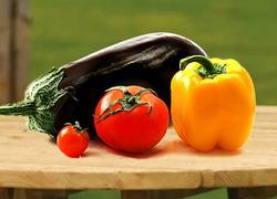 semanat tomate - ardei - patlagele vinete