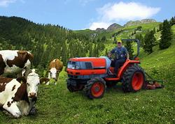 oportunitati fermieri si producatori zone montane