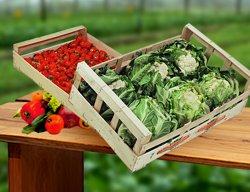 Ajutor producatori legume-fructe