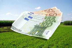 Avans de 79 de euro pe hectar