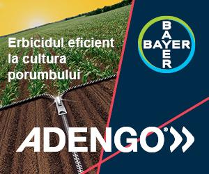 Adengo 465 SC de la Bayer | Erbicid preemergent si postemergent timpuriu pentru combaterea buruienilor anuale din cultura porumbului.
