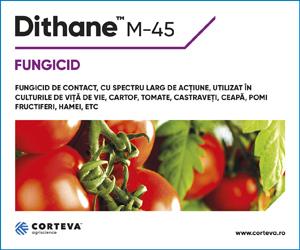 Dithane M-45 - Fungicid cu spectru deosebit de larg de actiune, utilizat in culturile de vita de vie, cartof, tomate, castraveti, ceapa, pomi fructiferi, hamei, etc.