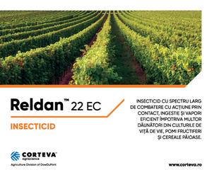 Reldan™ 22 EC - Insecticid cu spectru larg de combatere impotriva daunatorilor din culturile de vita de vie, pomi fructiferi, cereale paioase, rapita, mustar, precum si a celor din cereale depozitate