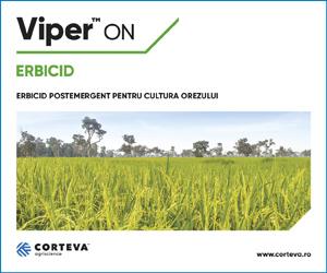 Viper™ On | Erbicid postemergent pentru cultura orezului