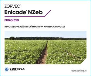 Zorvec Enicade | Fungicid sistematic pentru combaterea manei la cartof